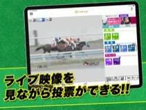 レース映像を楽しみながら